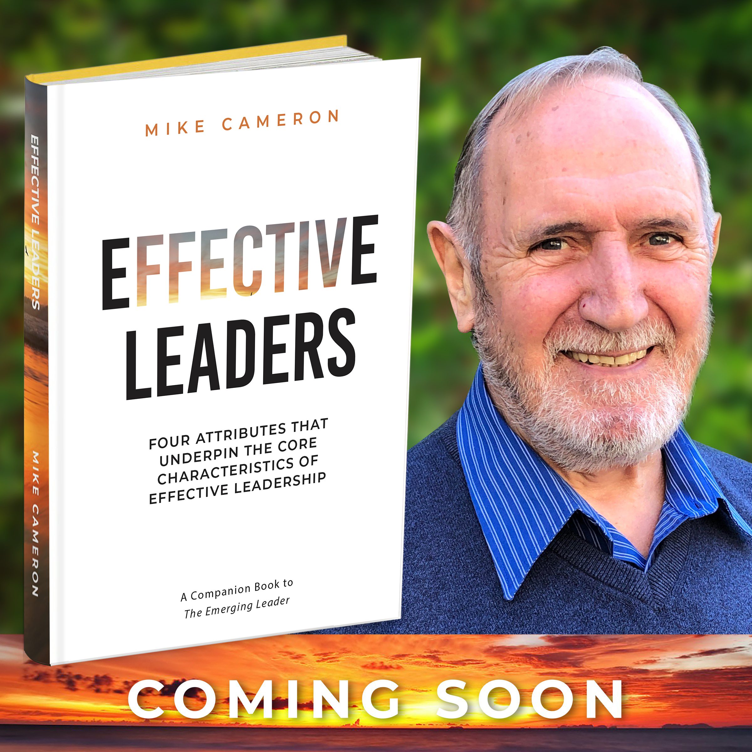 Effective Leaders book by Mike Cameron