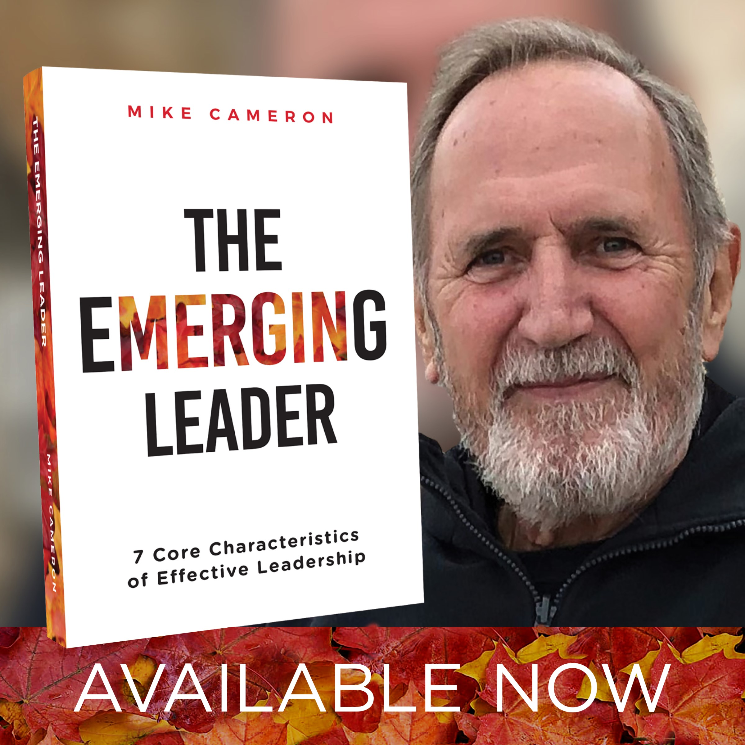 The Emerging Leader book by Mike Cameron